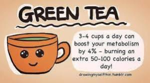 green tea and metabolism
